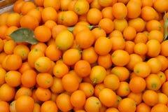 kumquatstapel Arkivfoton