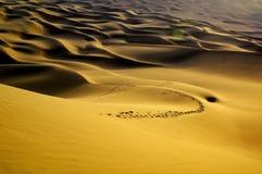 Kumtag desert landscape Stock Photo
