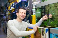 Kunde, der tropische Fische kauft Stockbild