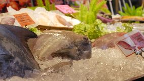 Kunde schwarze Butterfischfische im asiatischen Straßenmarkt wählen und kaufen Frisch im Eis bereit zum Verkauf nahaufnahme 4K stock footage