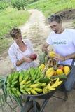 Kundenkaufen direkt vom lokalen Landwirt Lizenzfreies Stockfoto