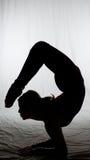 kundutbildning som balanserar iii Fotografering för Bildbyråer