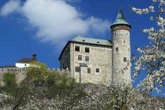 Kuneticka hora castle Stock Image