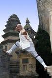 Kung chinês Fu Foto de Stock