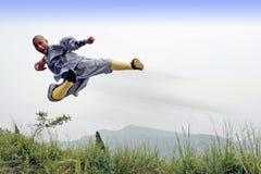 Kung chinois Fu photos stock