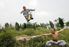 Kung cinese Fu Fotografia Stock