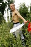 Kung cinese Fu immagini stock