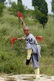 Kung cinese Fu fotografie stock