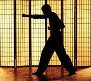 Kung fu打孔机 免版税库存图片