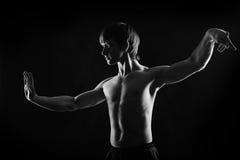 kung fu运动员剧烈的画象  免版税库存图片