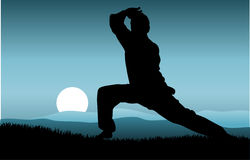 kung fu Стоковое Фото