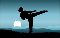 kung fu Стоковая Фотография RF