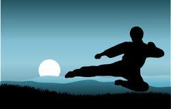kung fu Стоковая Фотография