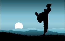 kung fu Стоковое Изображение RF