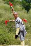 китайское kung fu Стоковые Фотографии RF