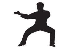 kung fu иллюстрация вектора