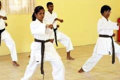 kung fu Стоковое Изображение