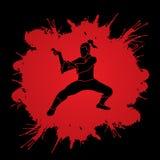 Kung-Fu Lizenzfreie Stockfotos