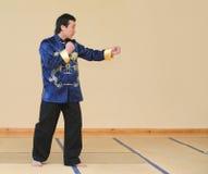 Kung-fu azjatycki wojownik Zdjęcie Stock