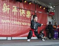 Kung Fu demonstracja Zdjęcie Royalty Free