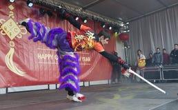 Kung Fu demonstracja Zdjęcia Royalty Free