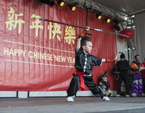 Kung Fu demonstration Royalty Free Stock Photo