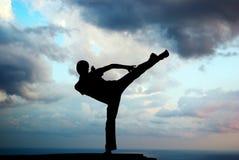 Kung fu at the edge royalty free stock photos
