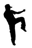 Kung fu fighter Royalty Free Stock Image
