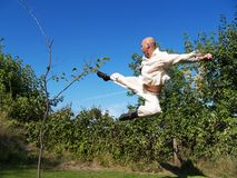 Kung fu flight Stock Photography
