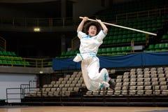 Kung Fu Heroes 2010 Italian Tour Royalty Free Stock Photo
