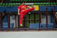Kung Fu Heroes 2010 Italian Tour Stock Image