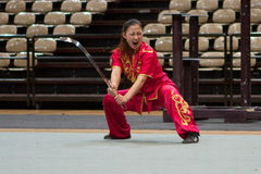 Kung Fu Heroes 2010 Italian Tour Stock Images