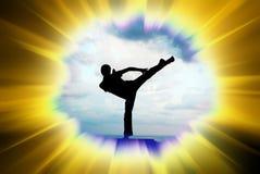 Kung fu illustration Stock Photography