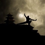 Kung Fu Kampfkunst-Hintergrund Stockfotos