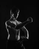 Kung Fu kata kick and block. Royalty Free Stock Photography