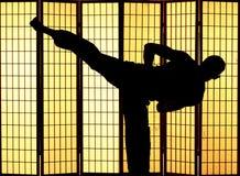 Kung fu kick Royalty Free Stock Image