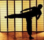 Kung fu kick Stock Image