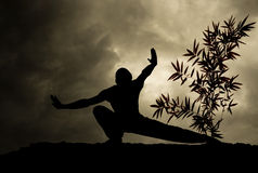 Kung Fu Martial Art Background Stock Image
