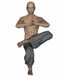 Kung Fu Monk Royalty-vrije Stock Foto