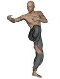 Kung Fu Monk Fotografia Stock Libera da Diritti