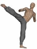Kung Fu Monk Royalty Free Stock Photo