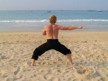 Kung fu på en strand Arkivfoto