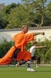 Kung fu praktyka, sławny Chiński sport Obraz Stock