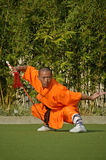 Kung fu praktyka, sławny Chiński sport Obrazy Royalty Free
