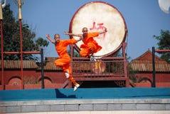Kung fu przedstawienie Obraz Royalty Free