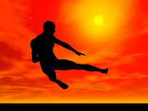 Kung-fu by sunset - 3D render. Shadow of a man in kung-fu posture by red sunset Stock Photo