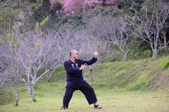 Kung fu training. Man fighter Royalty Free Stock Images