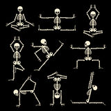 Kung fu and yoga skeletons vector set. Kung fu and yoga skeletons set. Human pose anatomy, body comic, healthy fitness, vector illustration Royalty Free Stock Photos