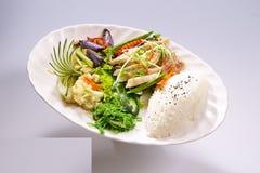 Kung Pao Chicken, de Sjalot van de Kippenrijst met groente op wit stock afbeelding