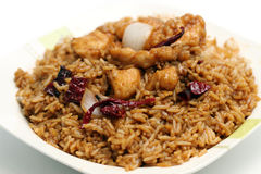 Kung Pao Chicken Rice Royalty Free Stock Images